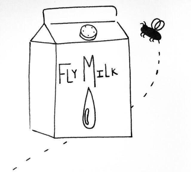 Flymilk.